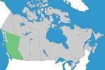 Piping – British Columbia