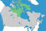 Nunavut Registration Requirements
